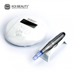 Permanent Makeup Derma Pen Digital Tattoo Integrated Machine facial skin rejuvenation Kits  Micro Tattoo Needles MTS PMU System